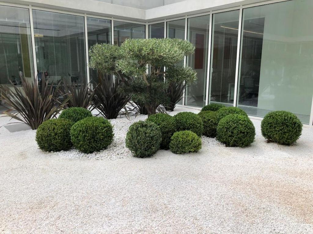 Giardino Giapponese Tradizionale Con Paesaggi Ideali In Miniatura