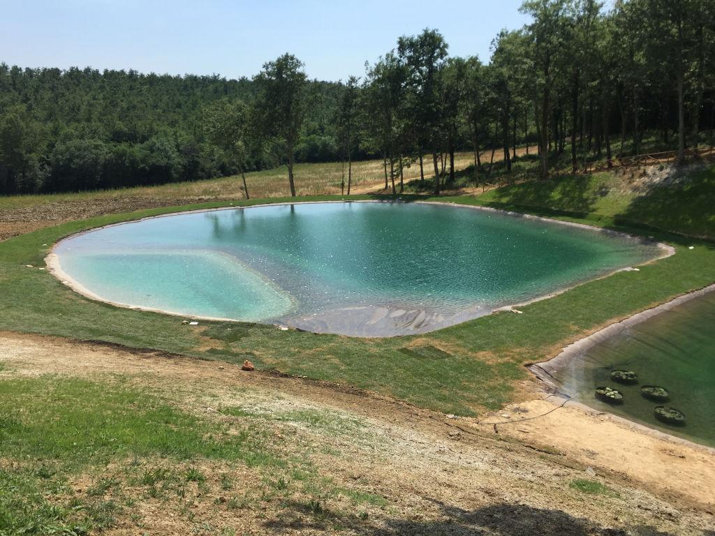 Ristrutturazione Vecchio Lago Di Raccolta Acqua, Con Zona Balneabile, Spiagge E Sedute In Acqua