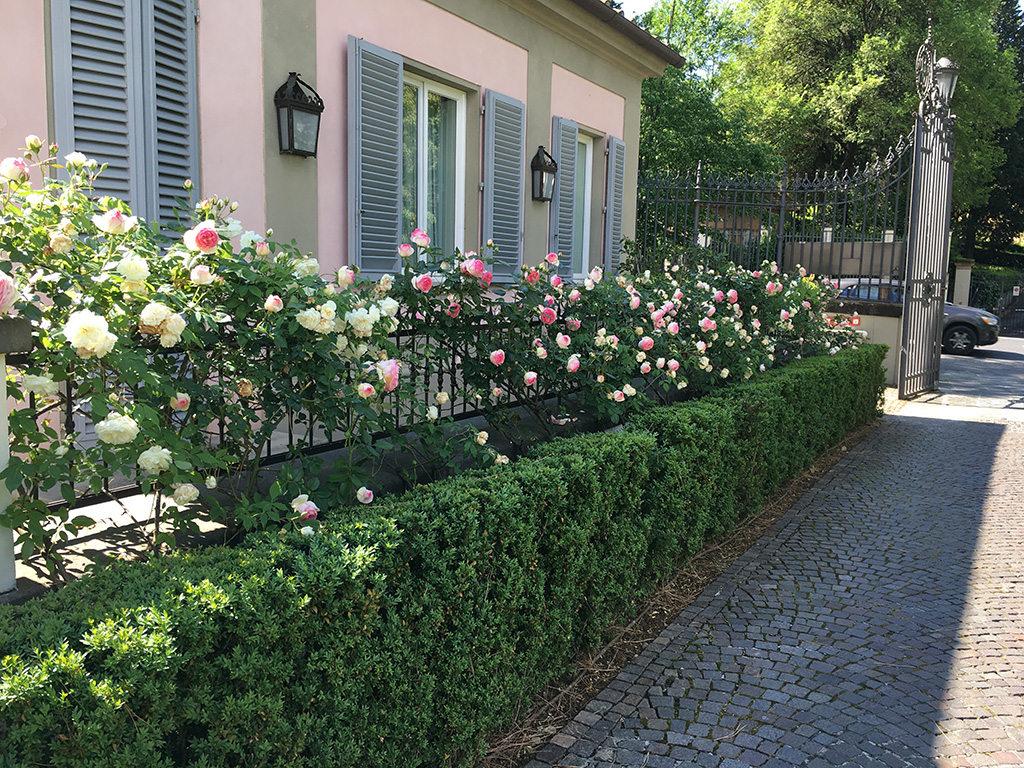 Giardino Di Villa Cora Hotel A Firenze